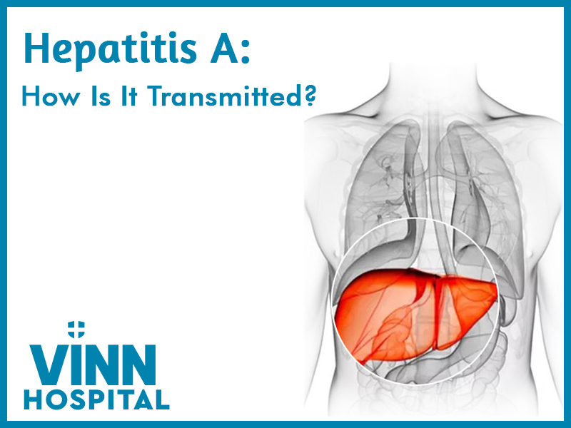 Hepatitis A: How Is It Transmitted?